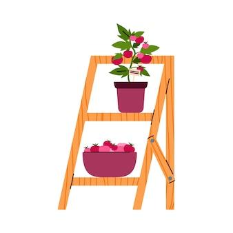 Ilustração plana dos desenhos animados do arbusto de tomate no pote em prateleiras de madeira