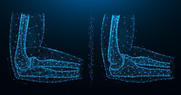 Ilustração poligonal azul da articulação do cotovelo, vista lateral e medial