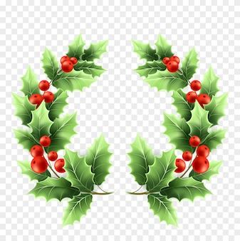 Ilustração realista da grinalda do azevinho do natal. galhos de árvores com folhas verdes e bagas vermelhas em fundo transparente. galhos redondos da árvore decorativa do azevinho do natal. elemento de design de cartaz. vetor isolado