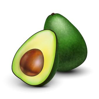 Ilustração realista de abacate verde Vetor Premium