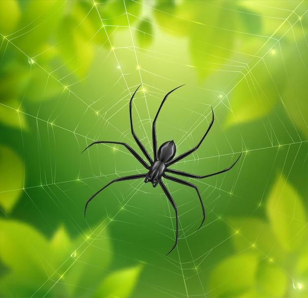 Ilustração realista de aranha na teia Vetor grátis