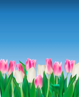 Ilustração realista de fundo de tulipas coloridas