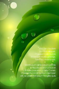Ilustração realista de gotas de água na grama verde fresca