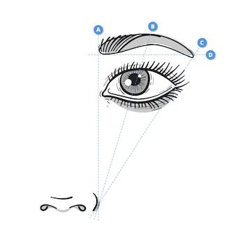 Ilustração realista de mapeamento de sobrancelha desenhada à mão