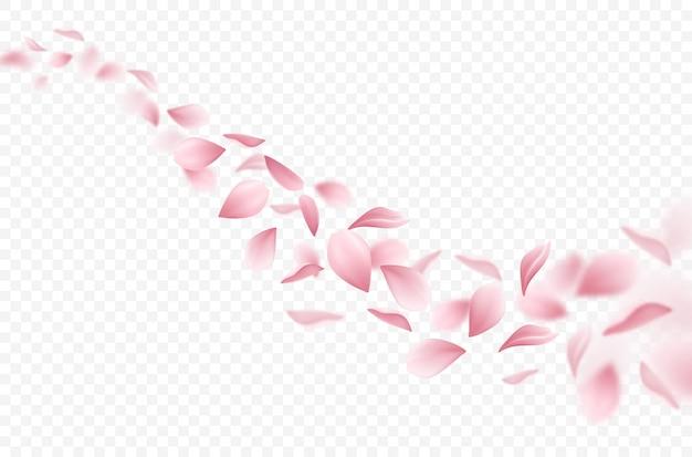 Ilustração realista de pétalas de sakura a voar