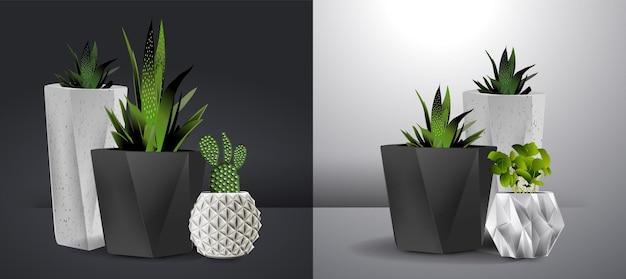Ilustração realística do interior da parede branca com plantas caseiras