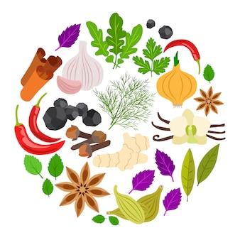 Ilustração redonda colorida de especiarias