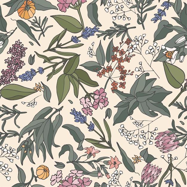 Ilustração sem costura padrão com plantas, ervas e flores.