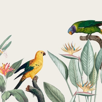 Ilustração tropical de arara