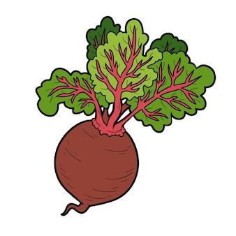 Ilustração vetorial a cores, vegetais coloridos, beterraba