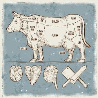 Ilustração vetorial conjunto de estacas de carne bovina.