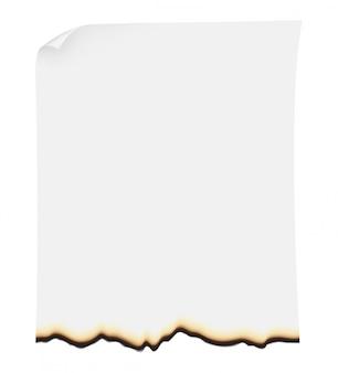 Ilustração vetorial de papel queimado