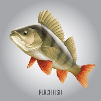Ilustração vetorial de peixe empoleirado