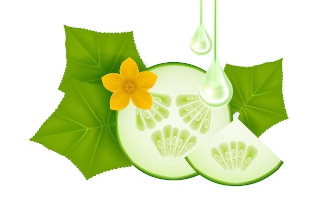 Ilustração vetorial de soro de pepino para produtos de cuidados com a pele
