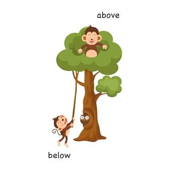 Ilustração vetorial oposta abaixo e acima