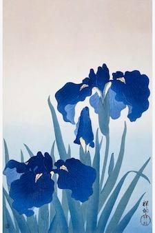Ilustração vintage com flores de íris