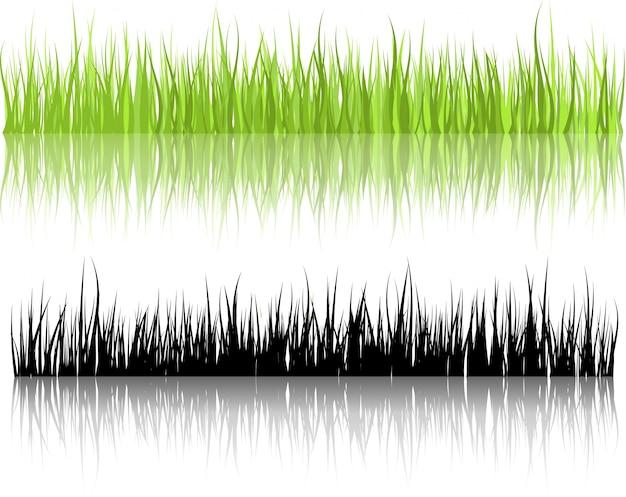 Ilustrações da grama com reflexões