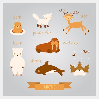 Ilustrações de animais do ártico. veado, morsa, foca, tubarão e raposa polar