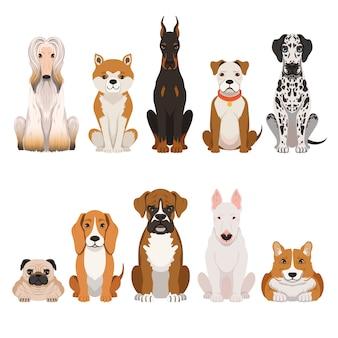 Ilustrações de cães engraçados no estilo cartoon.