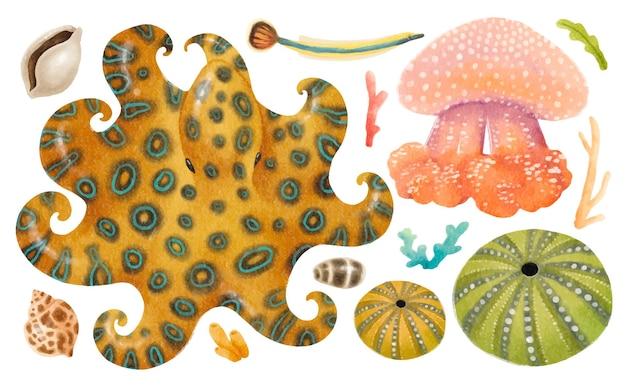 Ilustrações de criaturas marinhas pintadas à mão em aquarela