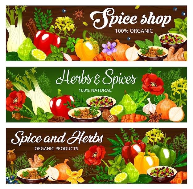 Ilustrações de ervas e especiarias com diferentes origens