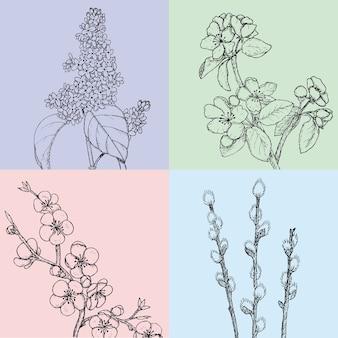 Ilustrações desenhadas à mão de flores de primavera com salgueiro de maçã cereja e ramos lilás botânicos naturais