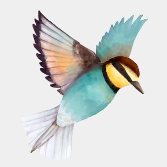 Ilustrações em aquarela de pássaro azul colorido