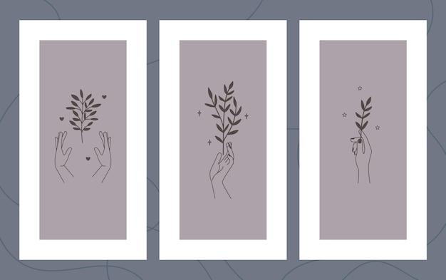 Ilustrações florais desenhadas à mão no conjunto de quadros