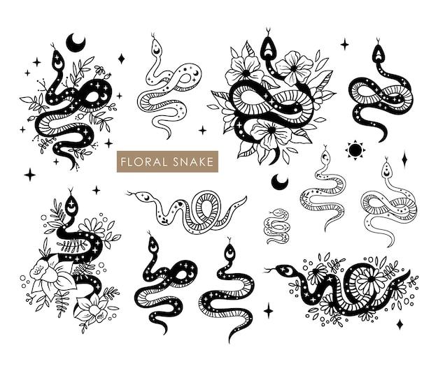 Ilustrações isoladas de cobra boho floral agrupam réptil celestial com o símbolo do sol e da lua