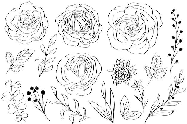 Ilustrações isoladas de flores com rosas e folhas desenhadas a mão