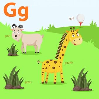Ilustrador, de, az, jogo, para, g, isolado