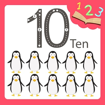Ilustrador de dez animais