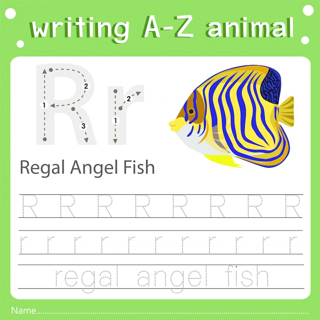 Ilustrador de escrever az animal r regal angelfish