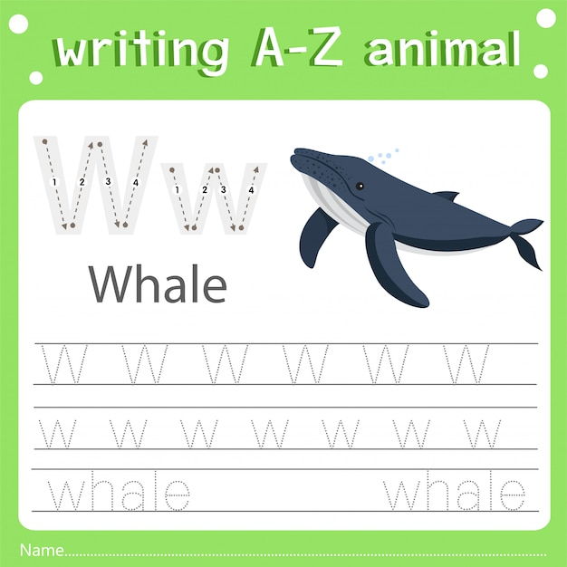 Ilustrador de escrever az animal w baleia