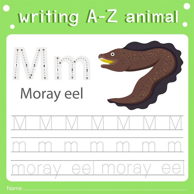 Ilustrador, de, escrita, az, animal m moray, enguia