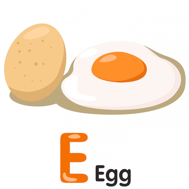 Ilustrador de fonte e com ovo