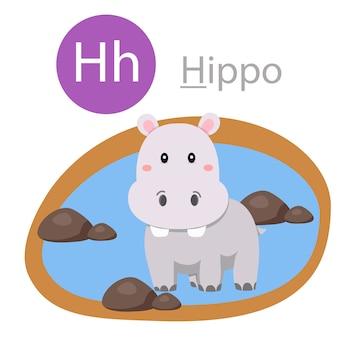 Ilustrador de h para animal hipopótamo