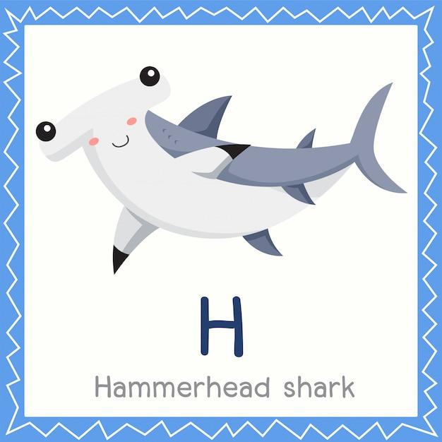Ilustrador de h para o animal do tubarão-martelo