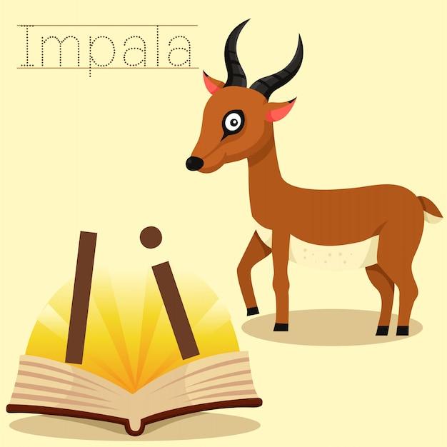 Ilustrador de i para o vocabulário de impala