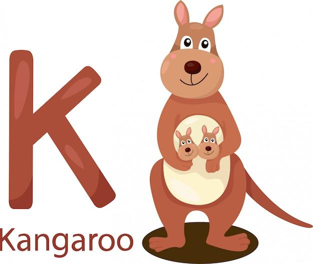 Ilustrador de k com canguru