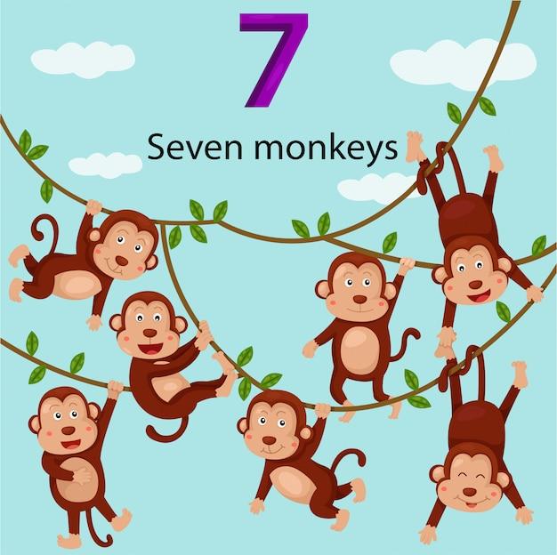 Ilustrador de macacos número sete