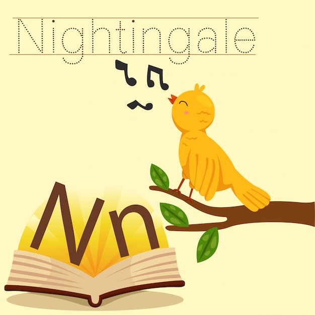 Ilustrador de n para o vocabulário de nightingale