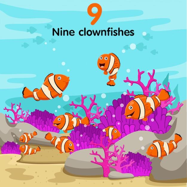 Ilustrador, de, número, com, nove, peixe palhaço