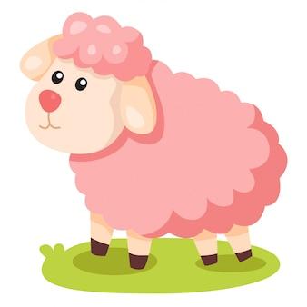 Ilustrador de ovelhas