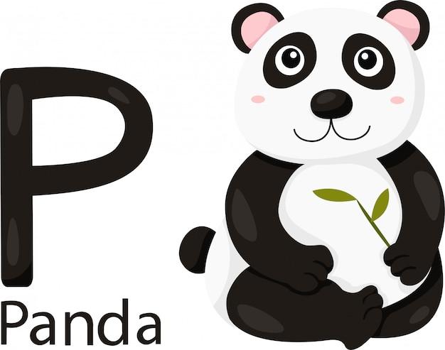 Ilustrador de p com panda