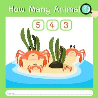 Ilustrador de quantos animais um