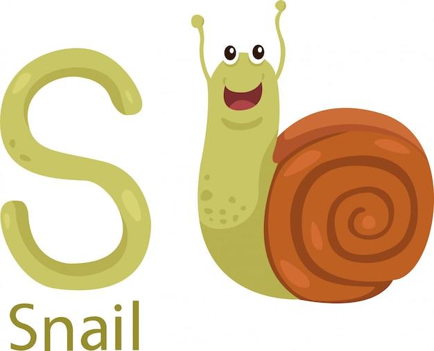 Ilustrador de s com caracol