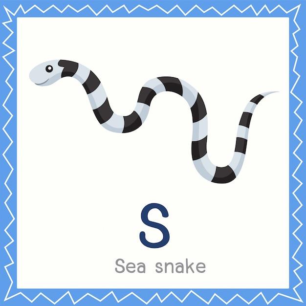 Ilustrador, de, s, para, mar, cobra, animal