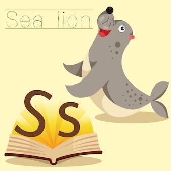 Ilustrador de s para o vocabulário do leão marinho