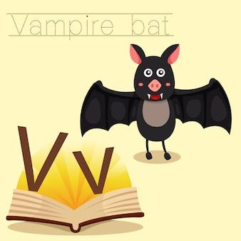 Ilustrador de v para vocabulário de morcego vampiro